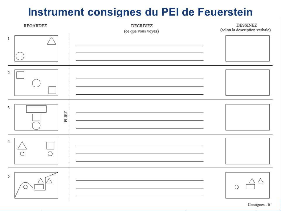 26 sept 2008 17 Instrument consignes du PEI de Feuerstein