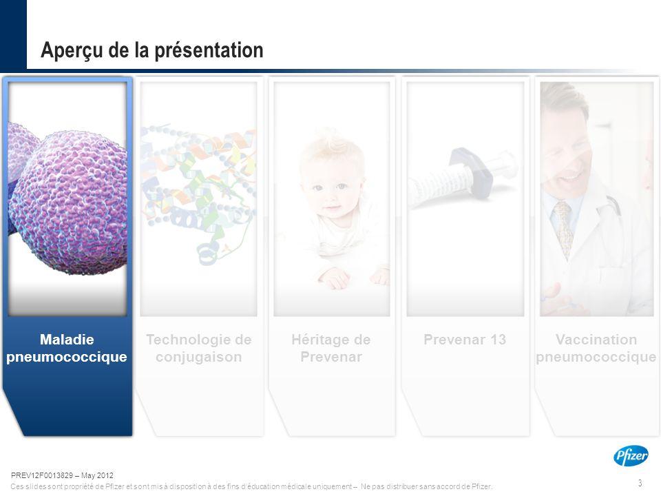3 PREV12F0013829-May 2012 Ces slides sont propriété de Pfizer et sont mis à disposition à des fins d'éducation médicale uniquement – Ne pas distribuer