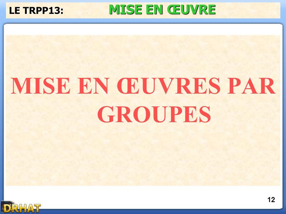 MISE EN ŒUVRES PAR GROUPES LE TRPP13: MISE EN ŒUVRE 12