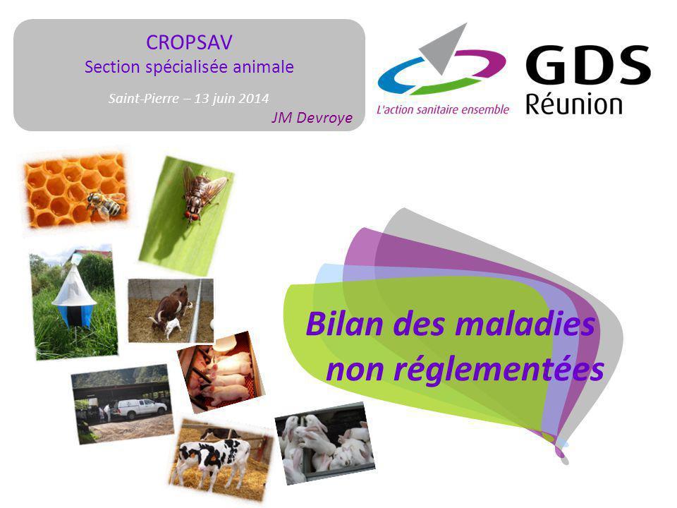 CROPSAV Section spécialisée animale Saint-Pierre – 13 juin 2014 JM Devroye Bilan des maladies non réglementées
