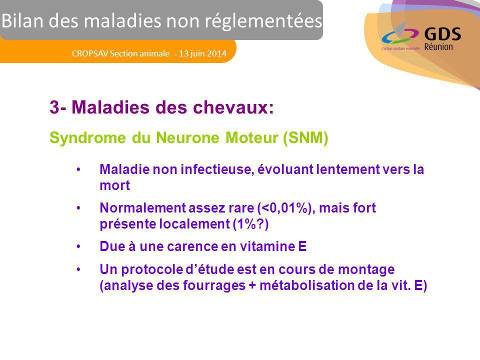 Réunion des Vétérinaires Sanitaires 3- Maladies des chevaux: Syndrome du Neurone Moteur (SNM) Maladie non infectieuse, évoluant lentement vers la mort
