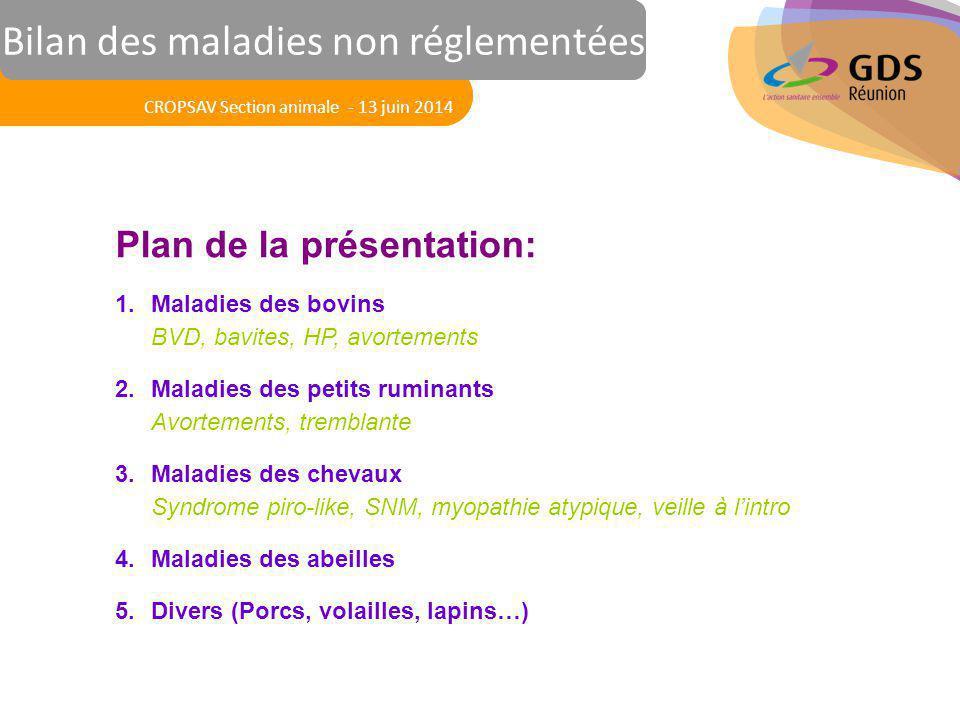 Le 13 mars 2014 Réunion des Vétérinaires Sanitaires Plan de la présentation: 1.Maladies des bovins BVD, bavites, HP, avortements 2.Maladies des petits