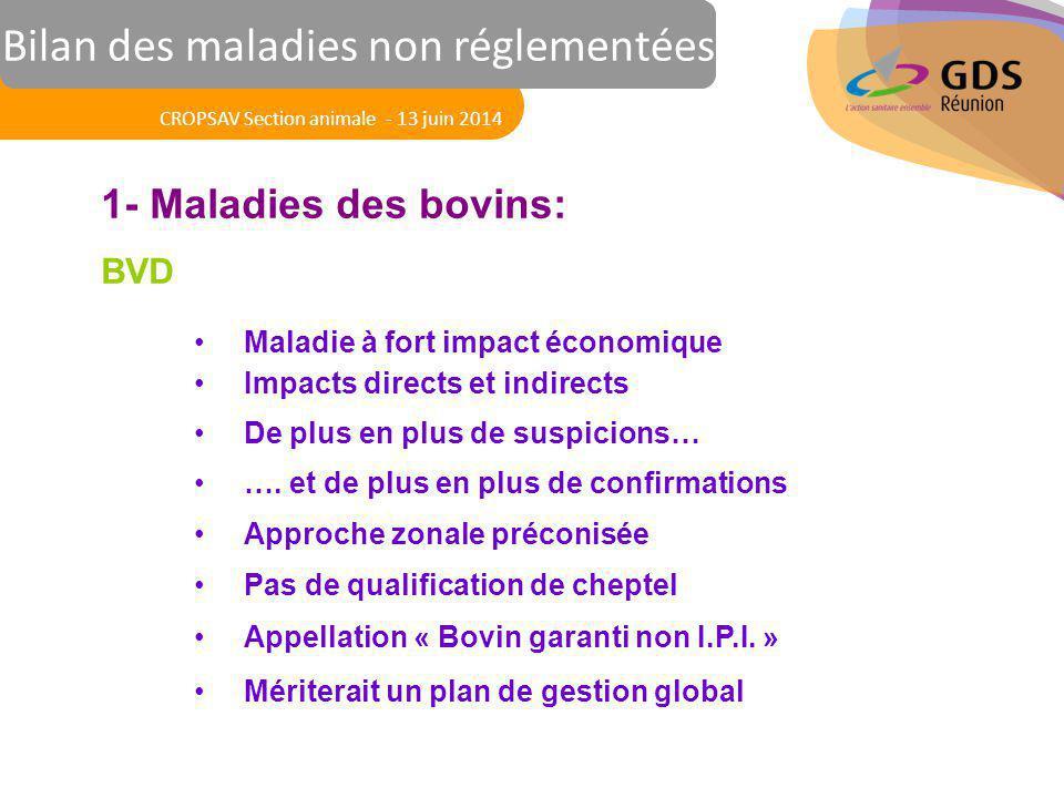 Réunion des Vétérinaires Sanitaires 1- Maladies des bovins: BVD Maladie à fort impact économique Impacts directs et indirects De plus en plus de suspi