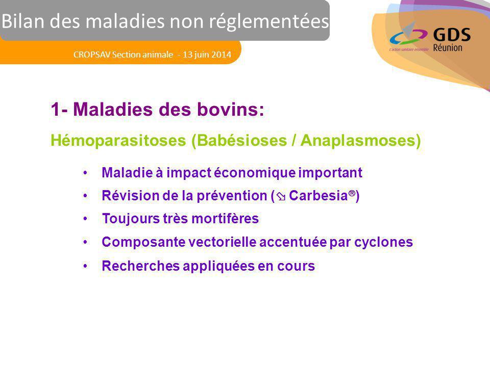 Réunion des Vétérinaires Sanitaires 1- Maladies des bovins: Hémoparasitoses (Babésioses / Anaplasmoses) Maladie à impact économique important Révision