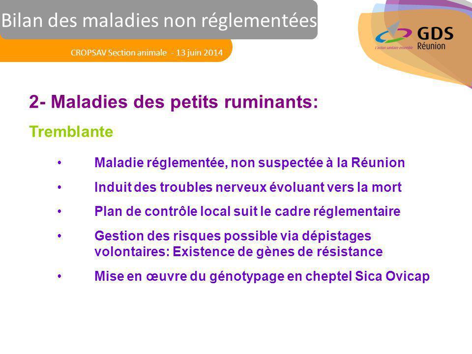 Réunion des Vétérinaires Sanitaires 2- Maladies des petits ruminants: Tremblante Maladie réglementée, non suspectée à la Réunion Induit des troubles n