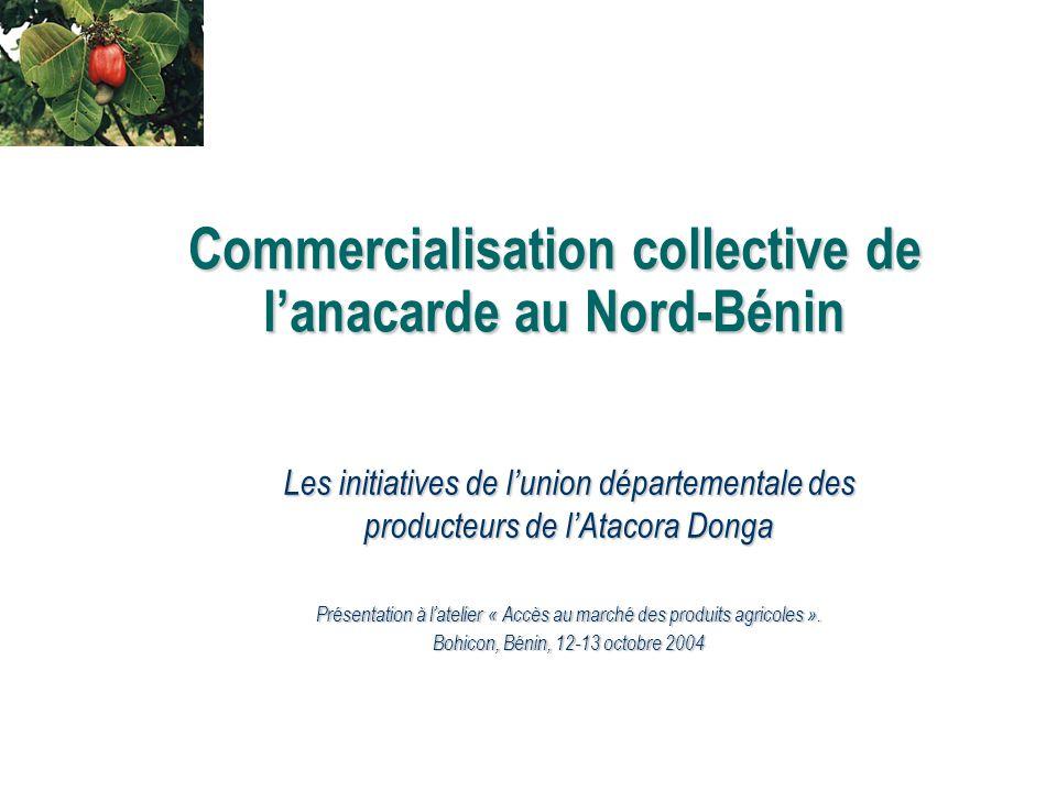 Commercialisation collective de l'anacarde au Nord-Bénin Les initiatives de l'union départementale des producteurs de l'Atacora Donga Présentation à l