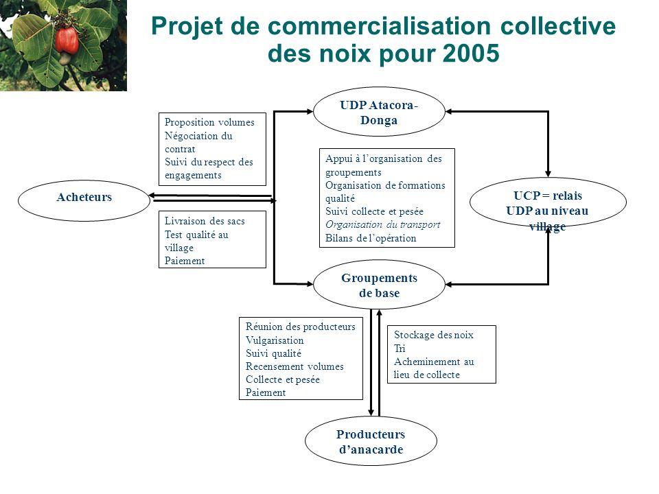 9 Projet de commercialisation collective des noix pour 2005 Acheteurs UDP Atacora- Donga Producteurs d'anacarde Appui à l'organisation des groupements