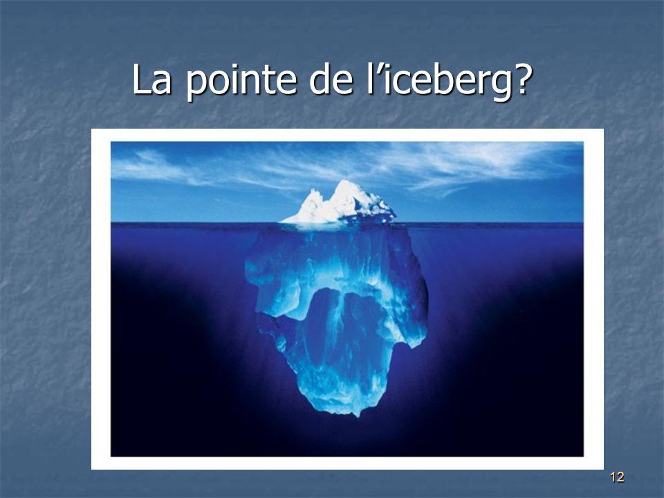 12 La pointe de l'iceberg?