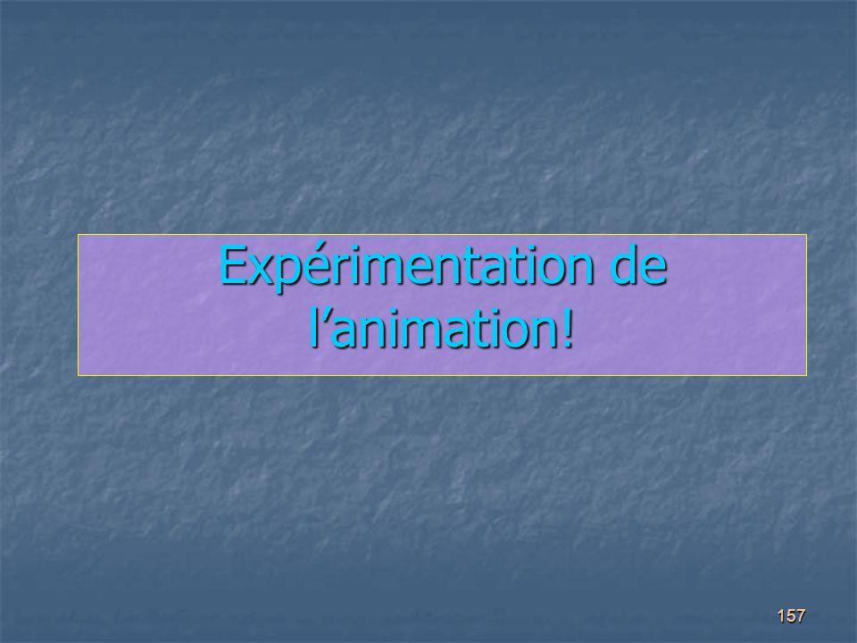 157 Expérimentation de l'animation!