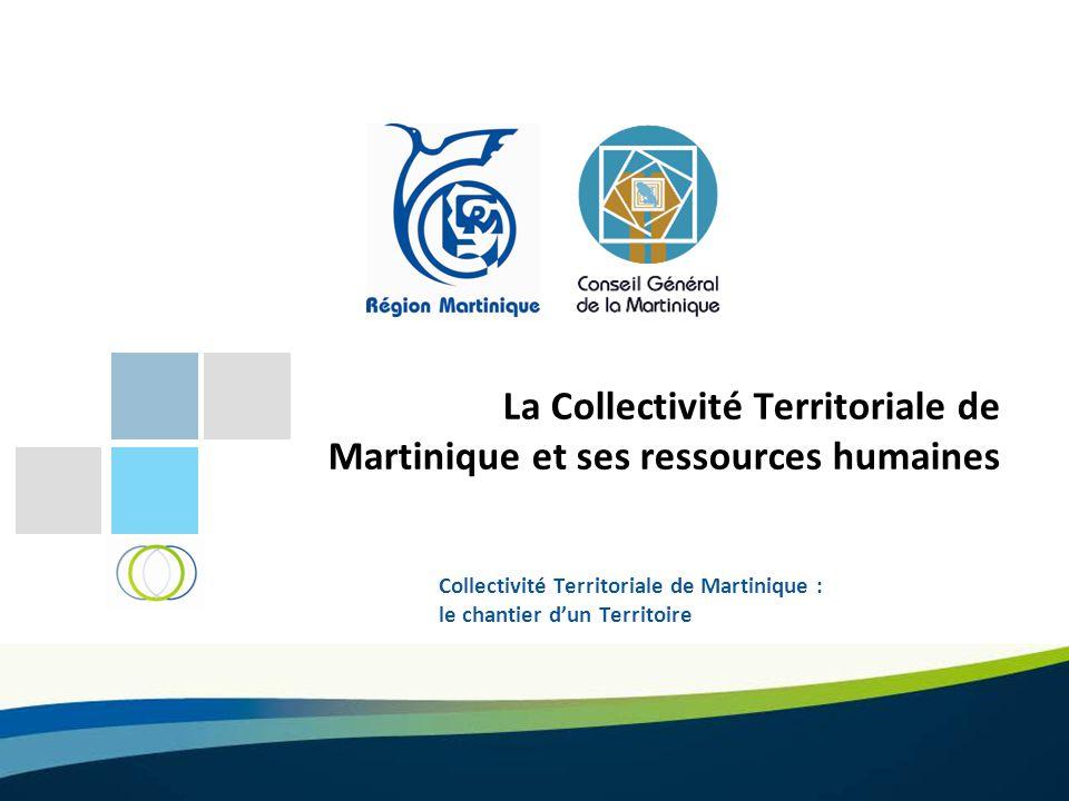 Collectivité Territoriale de Martinique : le chantier d'un Territoire La Collectivité Territoriale de Martinique et ses ressources humaines