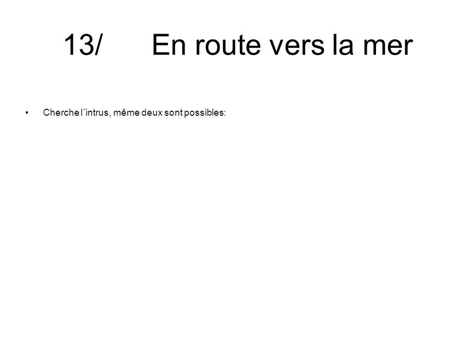 13/ En route vers la mer Cherche l´intrus, même deux sont possibles: