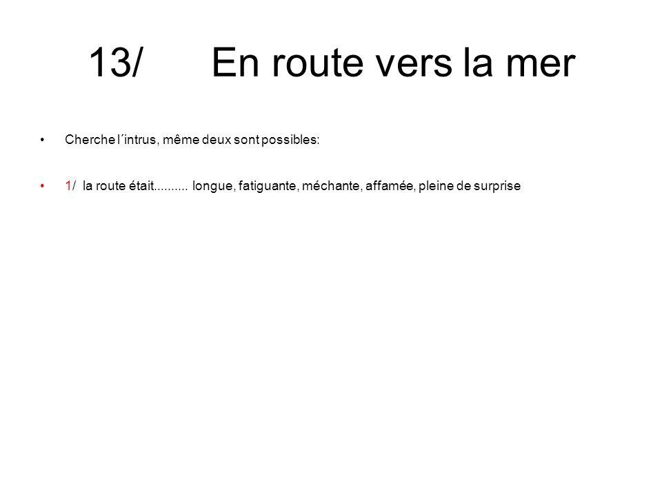 13/ En route vers la mer Cherche l´intrus, même deux sont possibles: 1/ la route était..........