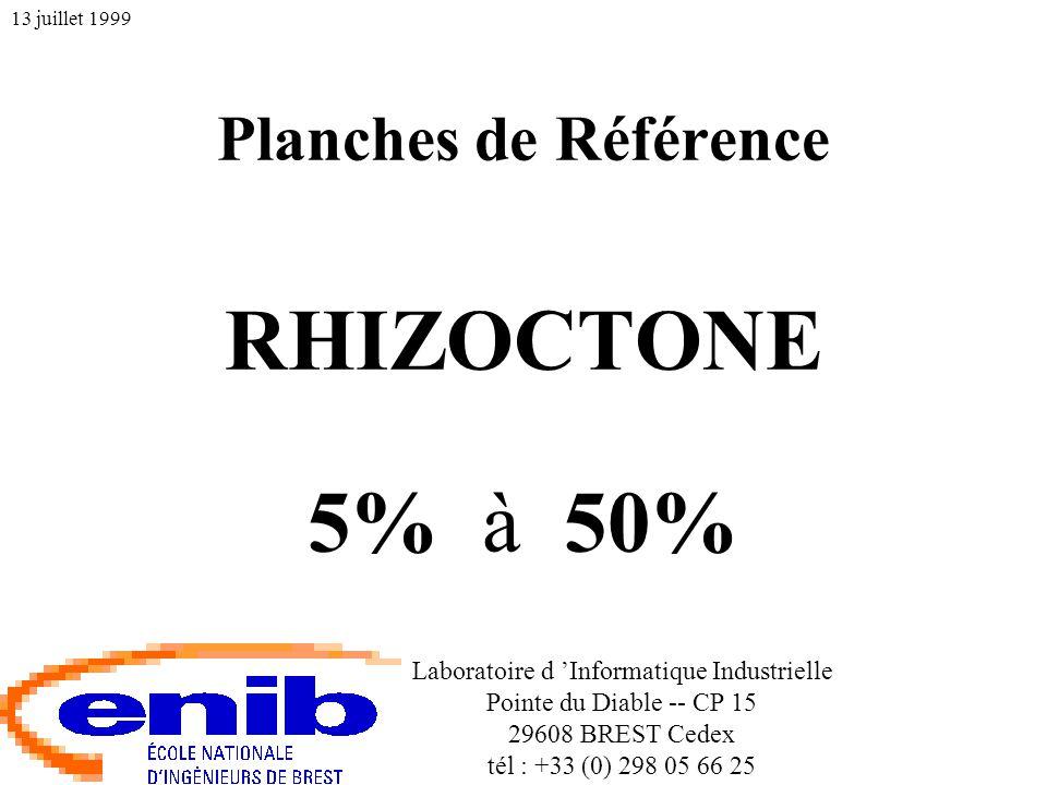Planches de Référence RHIZOCTONE 5% à 50% Laboratoire d 'Informatique Industrielle Pointe du Diable -- CP 15 29608 BREST Cedex tél : +33 (0) 298 05 66 25 13 juillet 1999
