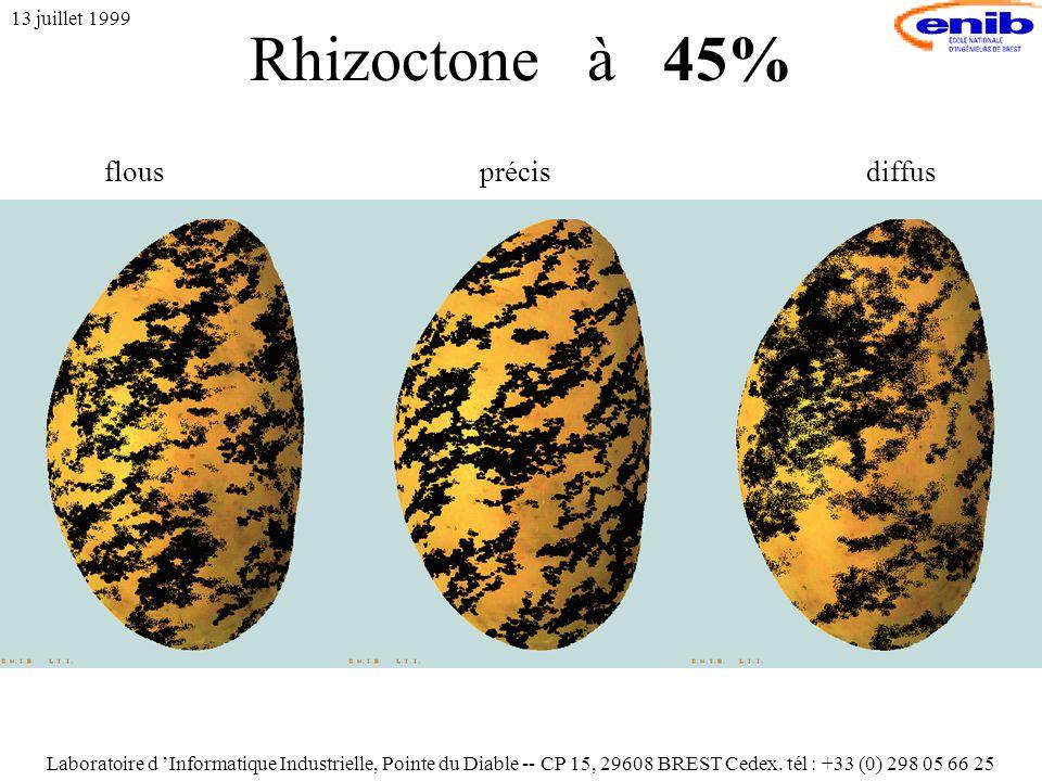 Rhizoctone à 45% 13 juillet 1999 flousprécisdiffus Laboratoire d 'Informatique Industrielle, Pointe du Diable -- CP 15, 29608 BREST Cedex.