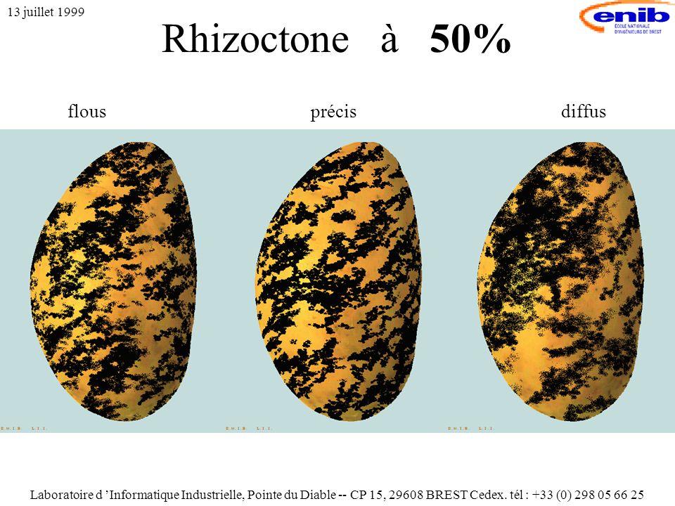 Rhizoctone à 50% 13 juillet 1999 flousprécisdiffus Laboratoire d 'Informatique Industrielle, Pointe du Diable -- CP 15, 29608 BREST Cedex.