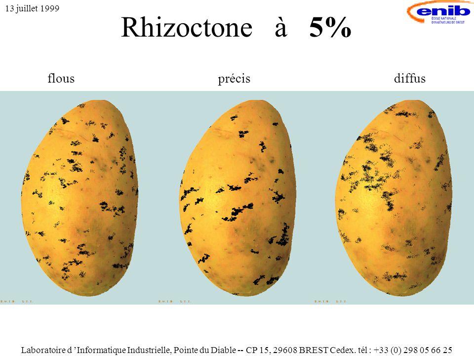 Rhizoctone à 5% 13 juillet 1999 flousprécisdiffus Laboratoire d 'Informatique Industrielle, Pointe du Diable -- CP 15, 29608 BREST Cedex.