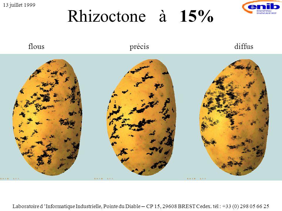 Rhizoctone à 15% 13 juillet 1999 flousprécisdiffus Laboratoire d 'Informatique Industrielle, Pointe du Diable -- CP 15, 29608 BREST Cedex.