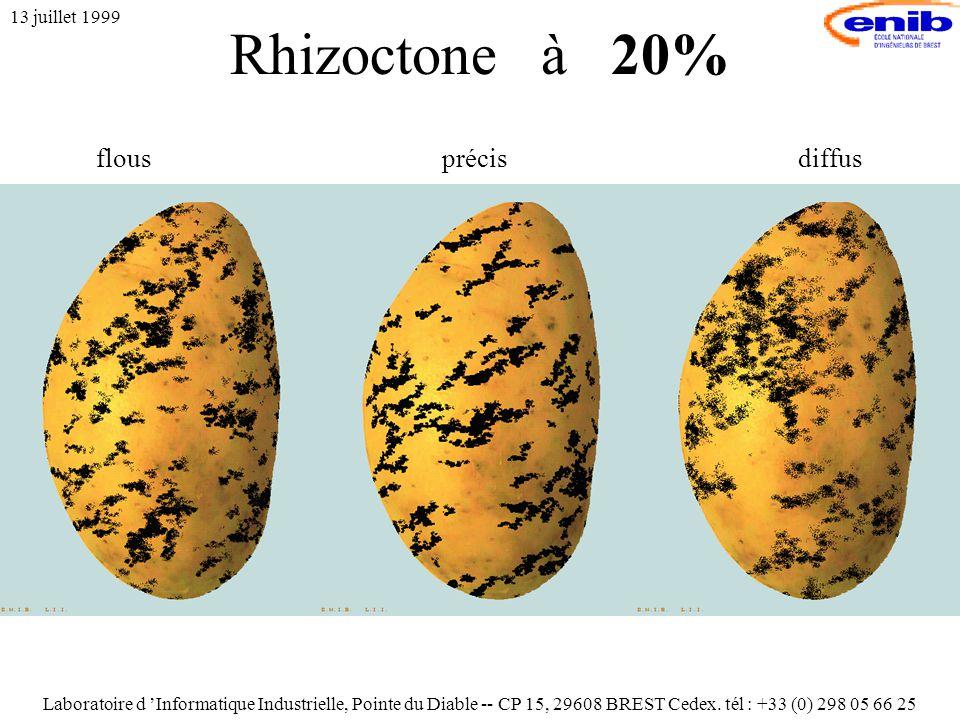 Rhizoctone à 20% 13 juillet 1999 flousprécisdiffus Laboratoire d 'Informatique Industrielle, Pointe du Diable -- CP 15, 29608 BREST Cedex.