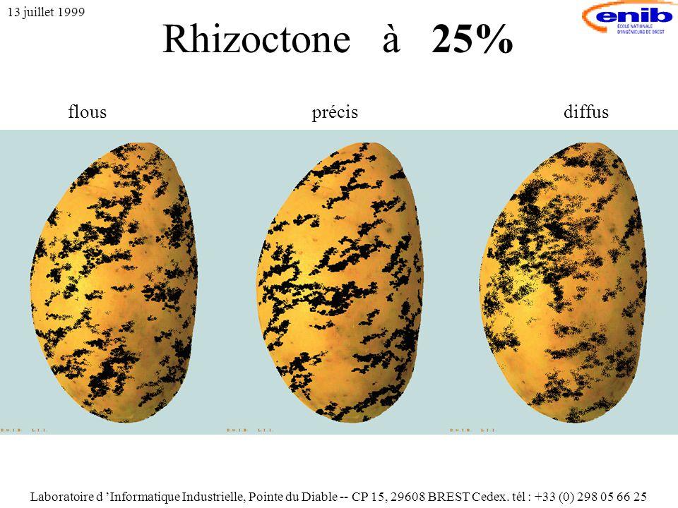 Rhizoctone à 25% 13 juillet 1999 flousprécisdiffus Laboratoire d 'Informatique Industrielle, Pointe du Diable -- CP 15, 29608 BREST Cedex.
