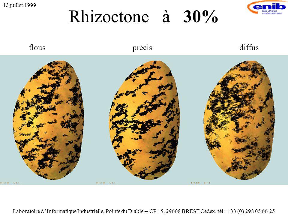 Rhizoctone à 30% 13 juillet 1999 flousprécisdiffus Laboratoire d 'Informatique Industrielle, Pointe du Diable -- CP 15, 29608 BREST Cedex.