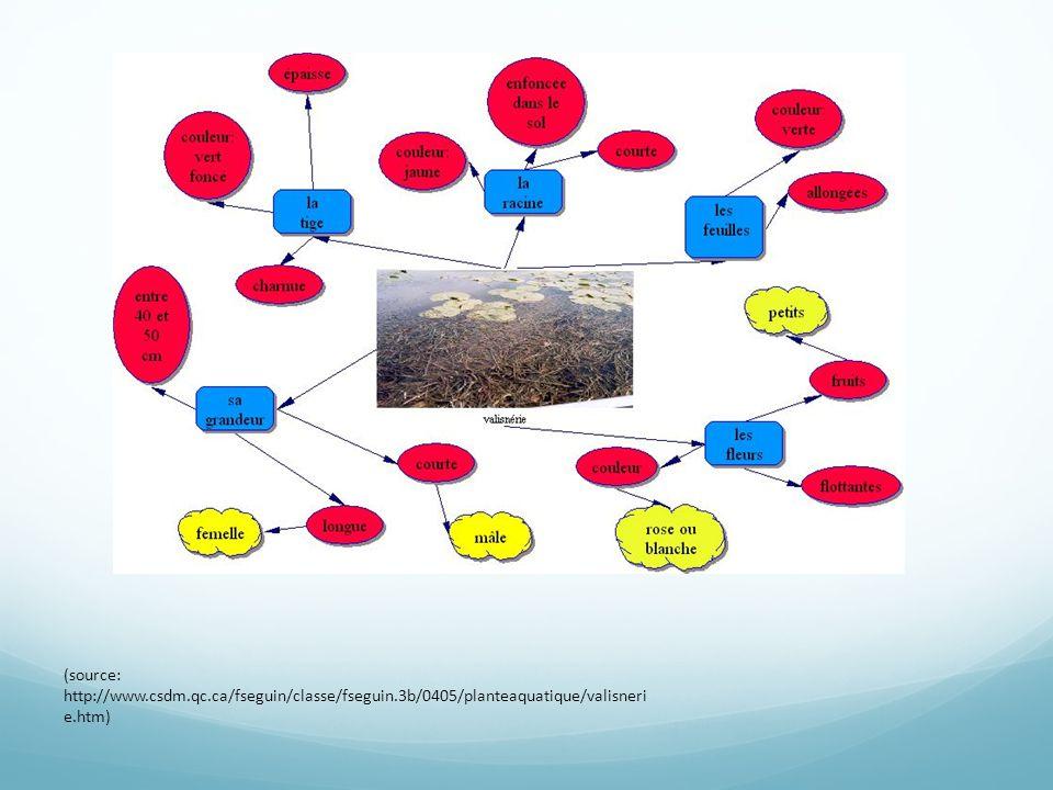 Utilisation d'un réseau de concepts pour objectiver les connaissances coélaborées sur le KF Identifier le sujet principal
