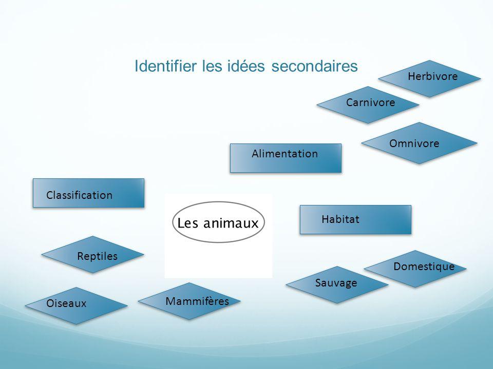 Organiser les concepts entre eux (p.ex. rassembler, prioriser, lier)