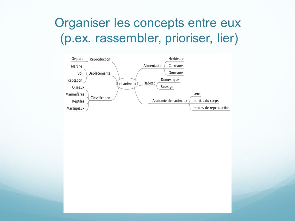 Le réseau de concepts..