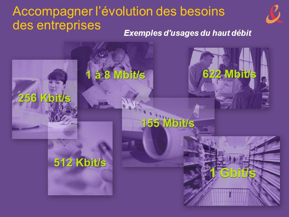 1 Gbit/s 622 Mbit/s 155 Mbit/s 1 à 8 Mbit/s 512 Kbit/s 256 Kbit/s Exemples d'usages du haut débit Accompagner l'évolution des besoins des entreprises