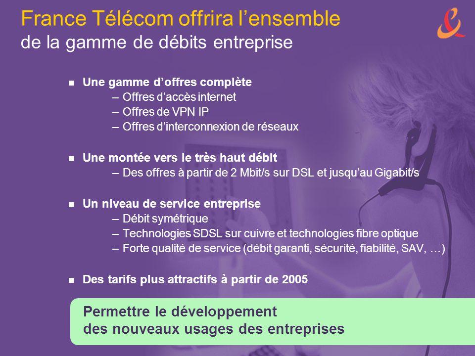 France Télécom offrira l'ensemble de la gamme de débits entreprise Une gamme d'offres complète –Offres d'accès internet –Offres de VPN IP –Offres d'in
