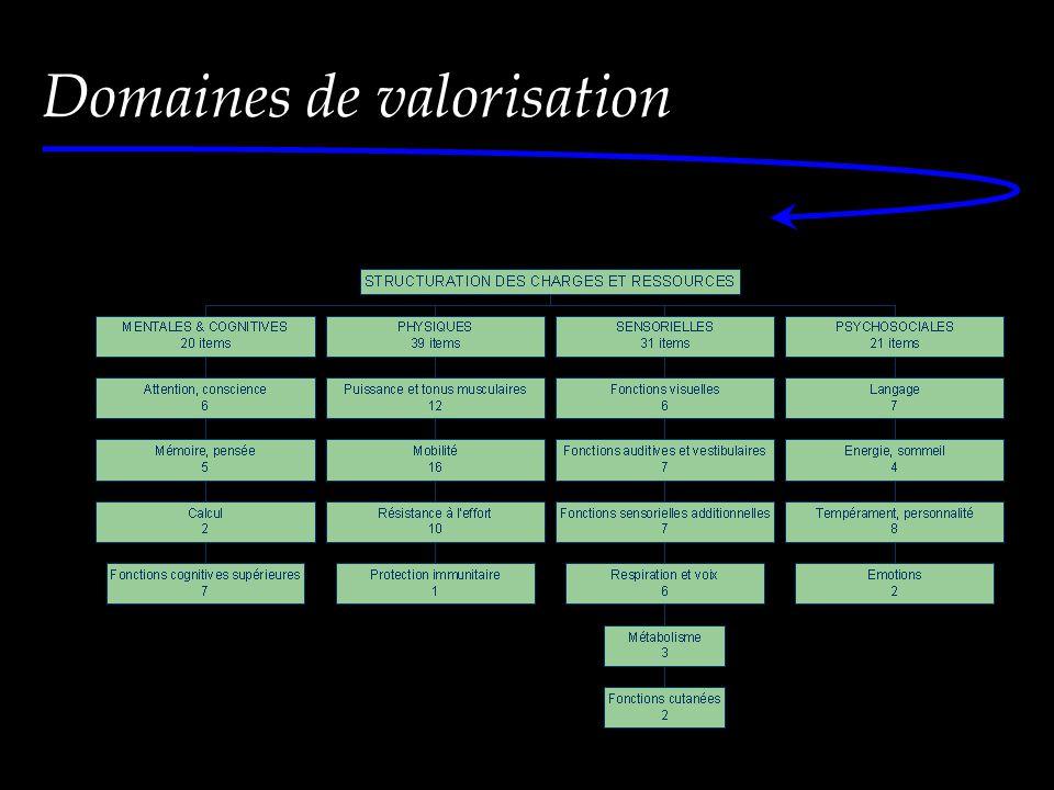 Domaines de valorisation