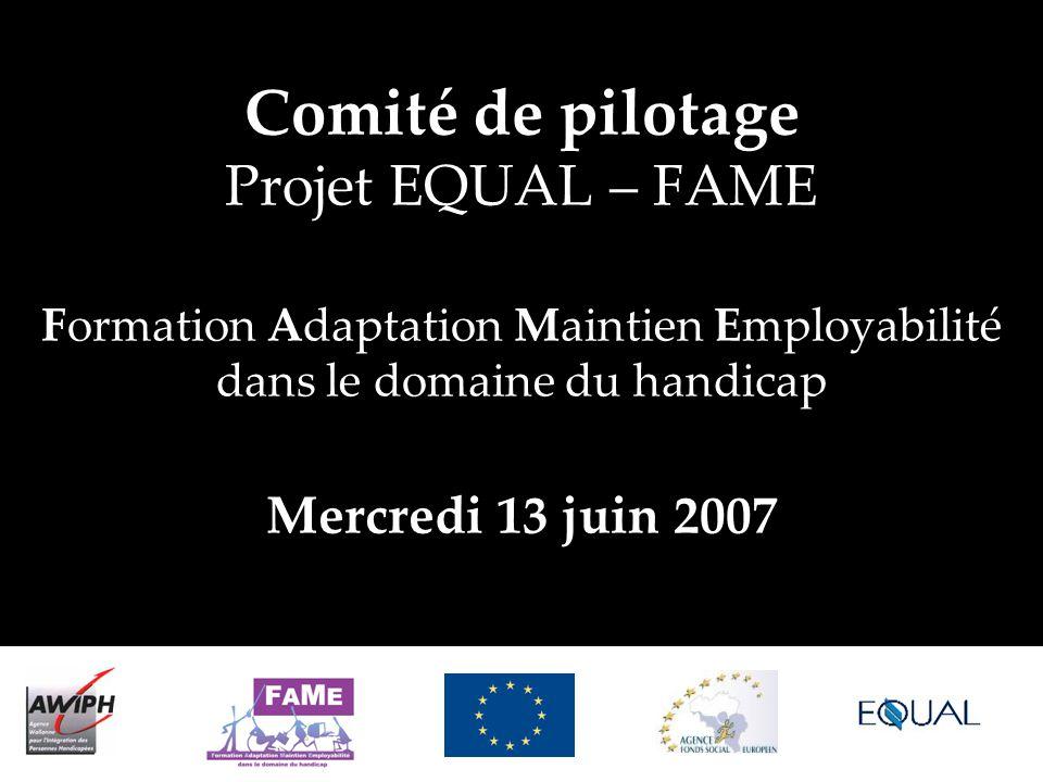 Comité de pilotage Projet EQUAL – FAME Formation Adaptation Maintien Employabilité dans le domaine du handicap Mercredi 13 juin 2007