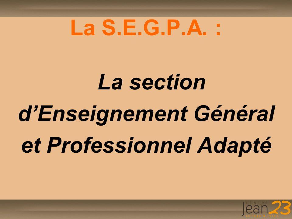 La S.E.G.P.A. : La section d'Enseignement Général et Professionnel Adapté