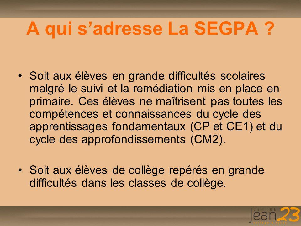 A qui s'adresse La SEGPA ? Soit aux élèves en grande difficultés scolaires malgré le suivi et la remédiation mis en place en primaire. Ces élèves ne m