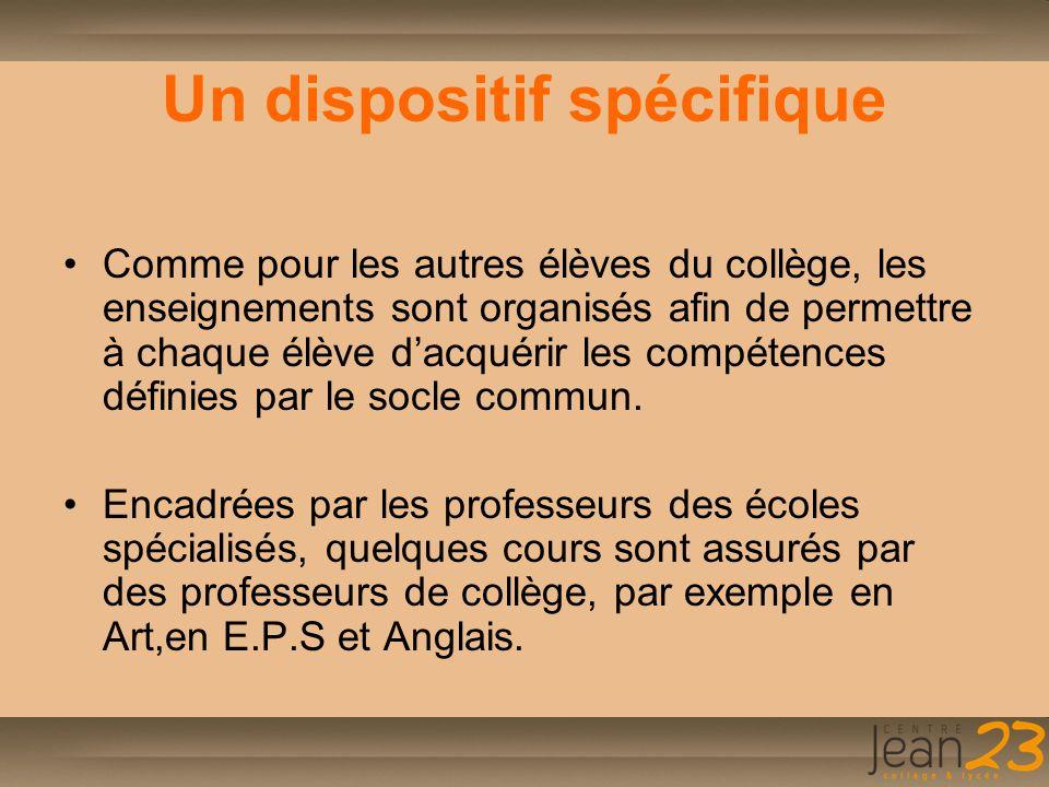 Composition de l'équipe SEGPA 1 directeur 2 enseignants spécialisés 2 enseignants professionnels 16 enseignants de collège intervenant en SEGPA