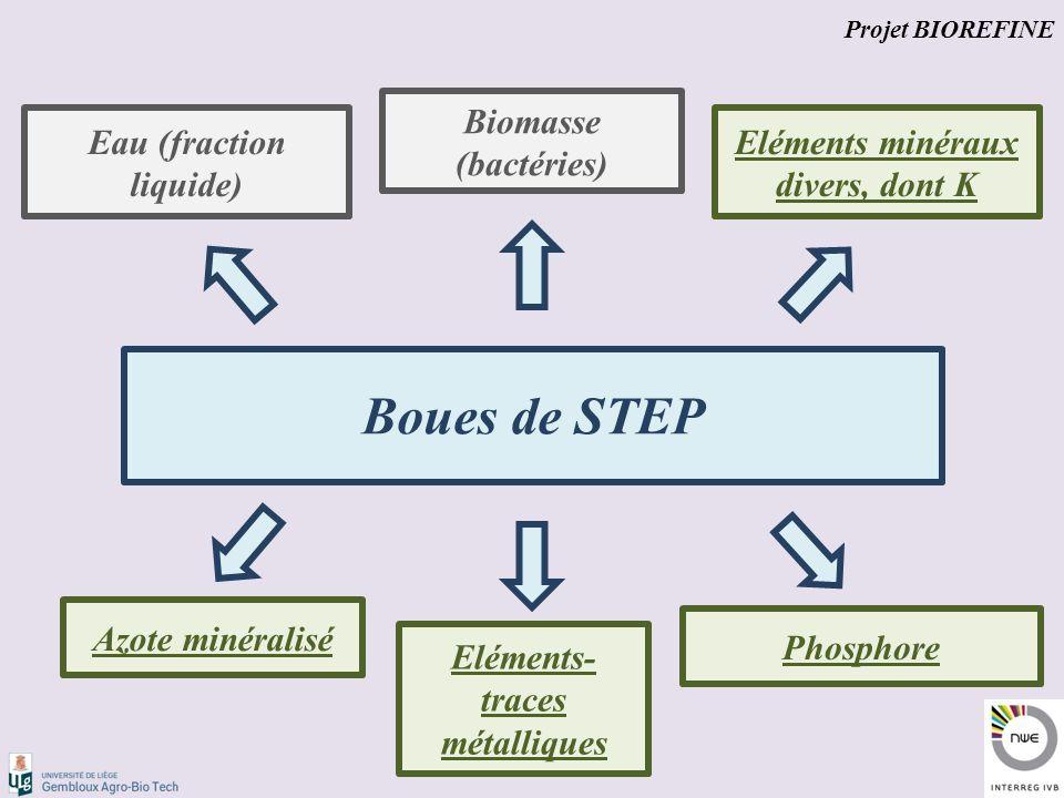 Boues de STEP Eau (fraction liquide) Biomasse (bactéries) Azote minéralisé Phosphore Eléments minéraux divers, dont K Eléments- traces métalliques Projet BIOREFINE