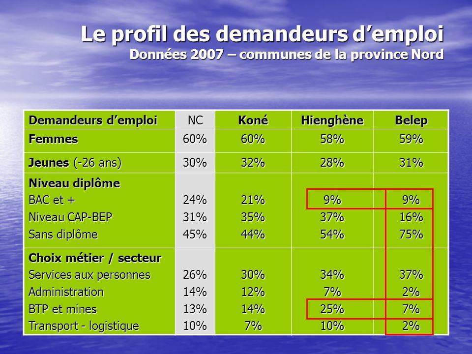 Le profil des demandeurs d'emploi Données 2007 – communes de la province Nord Demandeurs d'emploi NCKonéHienghèneBelep Femmes60%60%58%59% Jeunes (-26