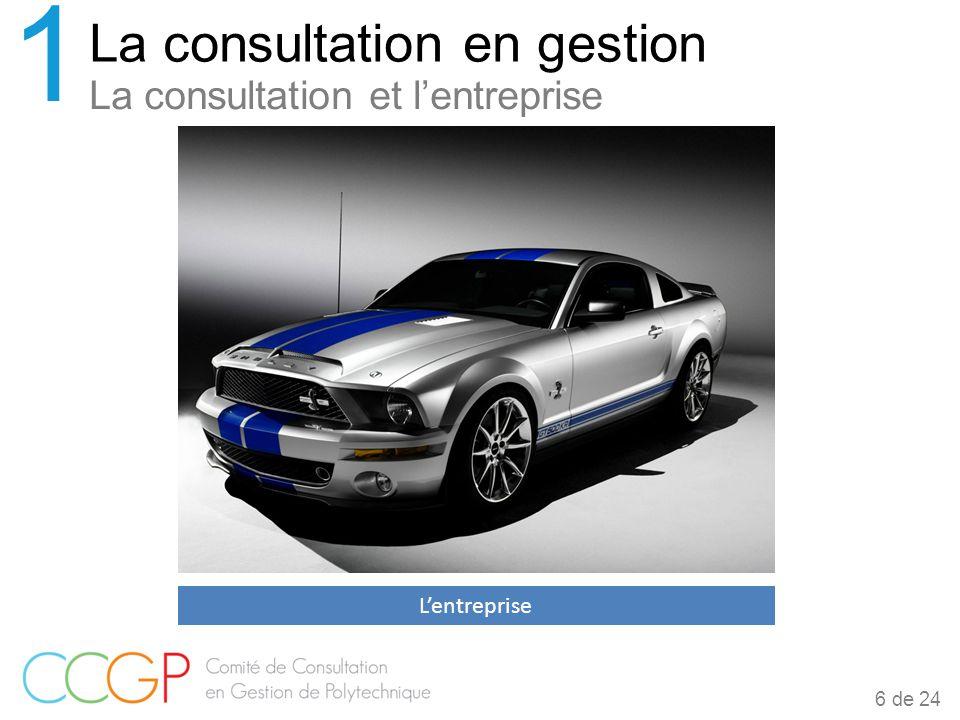 La consultation et l'entreprise La consultation en gestion 1 6 de 24 L'entreprise
