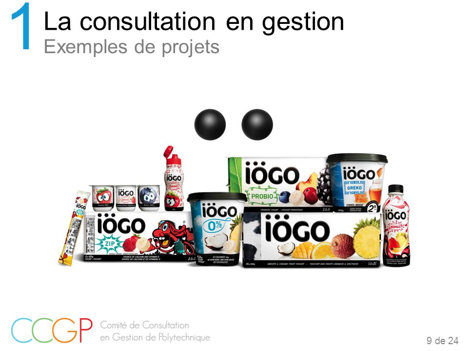 La consultation en gestion 1 Exemples de projets 9 de 24