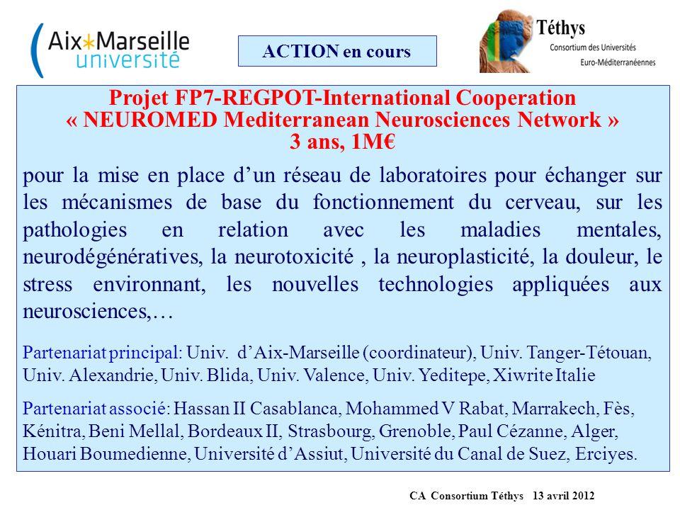 ACTION en cours Projet FP7-REGPOT-International Cooperation « NEUROMED Mediterranean Neurosciences Network » 3 ans, 1M€ pour la mise en place d'un rés