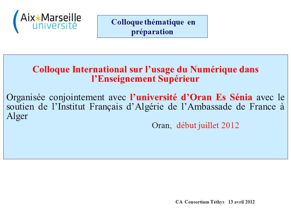 Colloque thématique en préparation Colloque International sur l'Insertion Professionnelle et l'employabilité des diplômés de l'enseignement supérieur Organisée par l'Université d'Aix-Marseille et Téthys avec le soutien de l'Institut Français d'Algérie de l'Ambassade de France à Alger et de la Région PACA Aix en Provence, mars 2013 CA Consortium Téthys 13 avril 2012