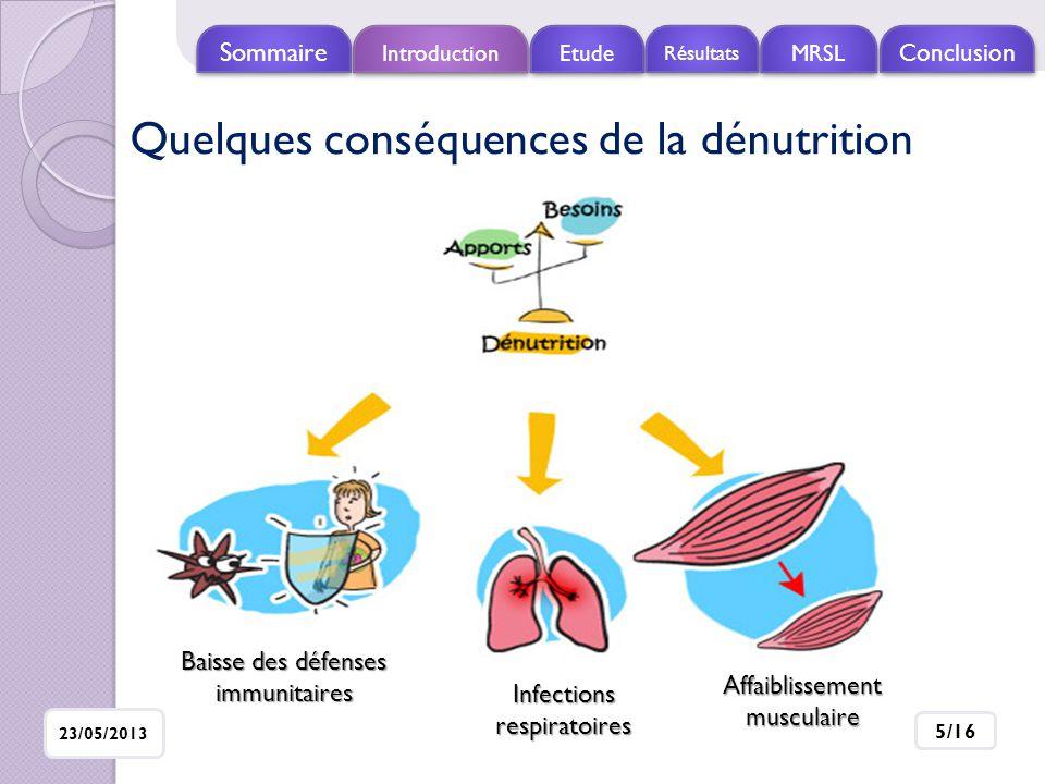 Introduction Etude Résultats MRSL Conclusio n Sommaire 23/05/2013 16/16