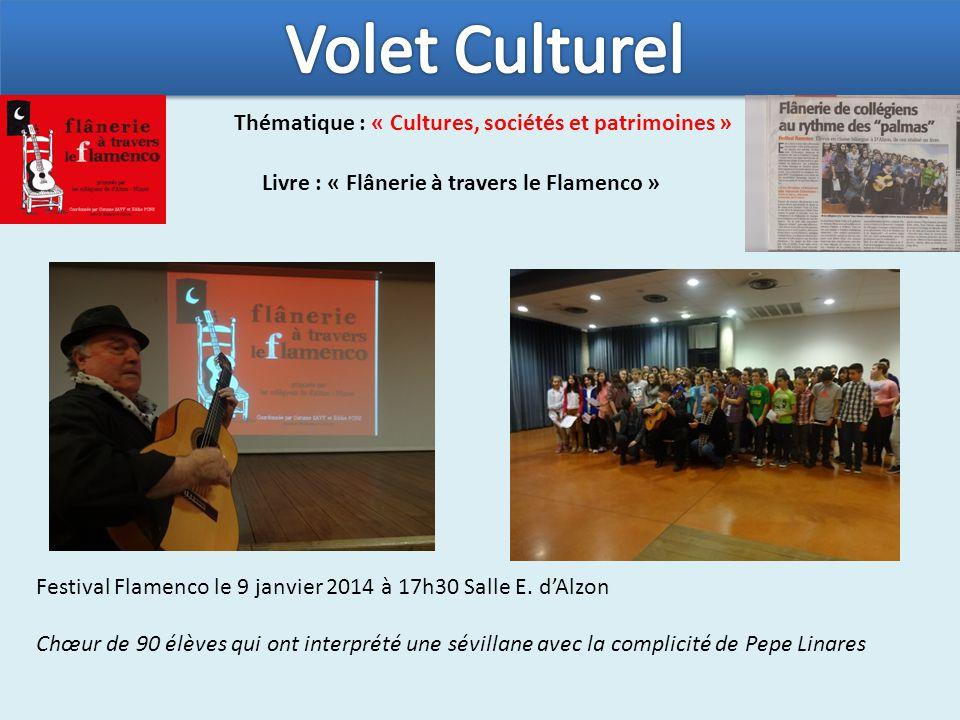 Thématique : « Cultures, sociétés et patrimoines » Livre : « Flânerie à travers le Flamenco » Festival Flamenco le 9 janvier 2014 à 17h30 Salle E.