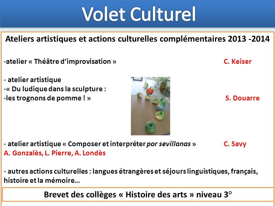 Ateliers artistiques et actions culturelles complémentaires 2013 -2014 -atelier « Théâtre d'improvisation » C.