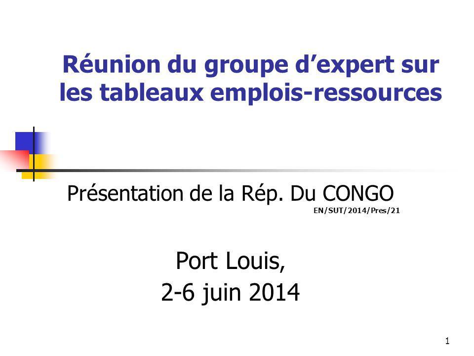 1 Réunion du groupe d'expert sur les tableaux emplois-ressources Présentation de la Rép.
