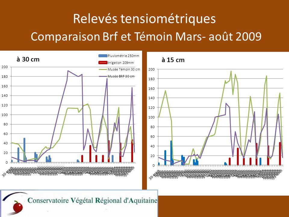 Relevés tensiométriques Comparaison Brf et Témoin Mars- août 2009