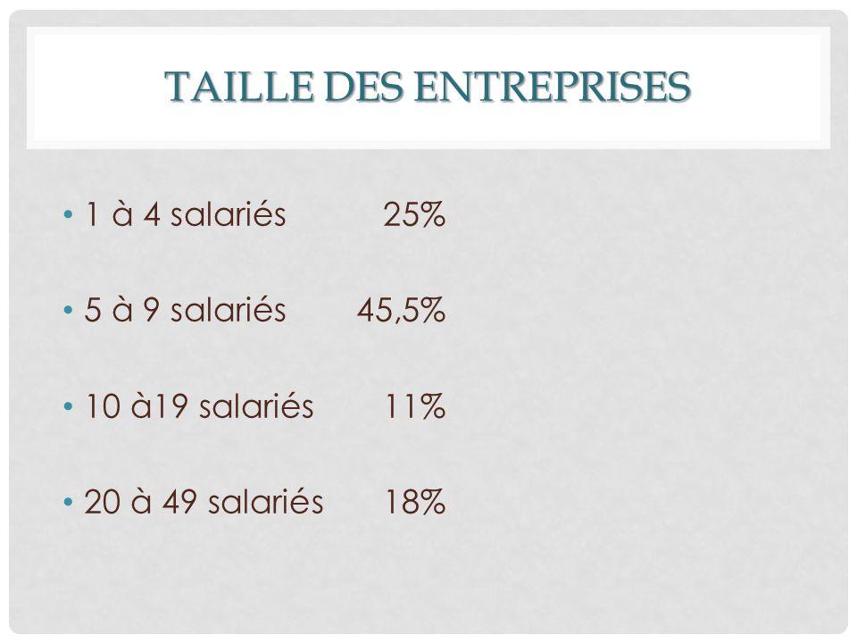 TAILLE DES ENTREPRISES 1 à 4 salariés 25% 5 à 9 salariés 45,5% 10 à19 salariés 11% 20 à 49 salariés 18%