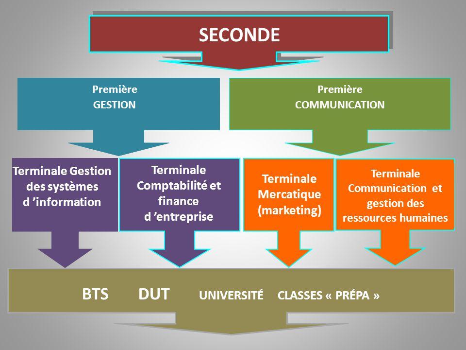 SECONDE Première GESTION Terminale Gestion des systèmes d 'information Terminale Comptabilité et finance d 'entreprise Terminale Mercatique (marketing