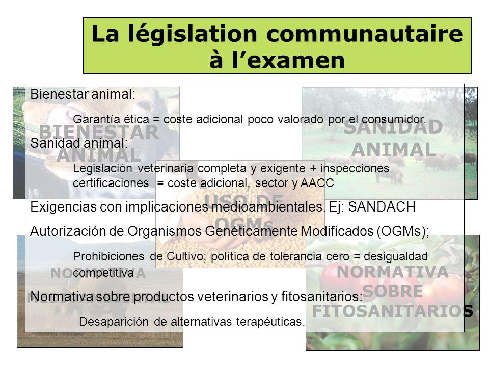 NORMATIVA MEDIOAMBIENTAL La législation communautaire à l'examen BIENESTAR ANIMAL SANIDAD ANIMAL USO DE OGMs NORMATIVA SOBRE FITOSANITARIOS Bienestar animal: Garantía ética = coste adicional poco valorado por el consumidor.