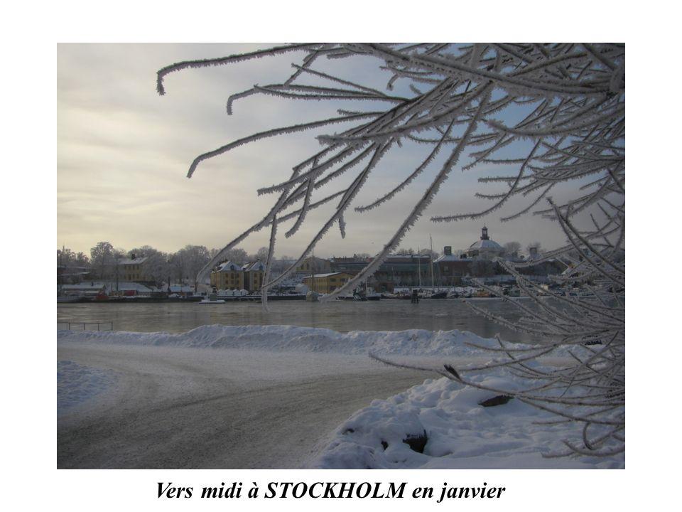 Vers midi à STOCKHOLM en janvier