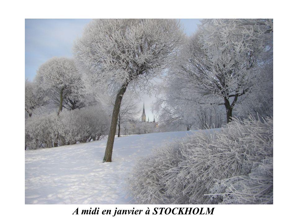 A midi en janvier à STOCKHOLM